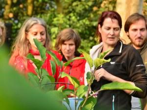 Workshop gourmet herb salads from your own garden