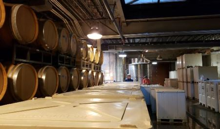 Winemaking Room Looking Over Primary Fermentation Vats