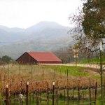 Santa Barbara to Paso Robles Cycling Vacation