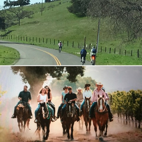 Blazing Saddles: Bike & Horseback Tour