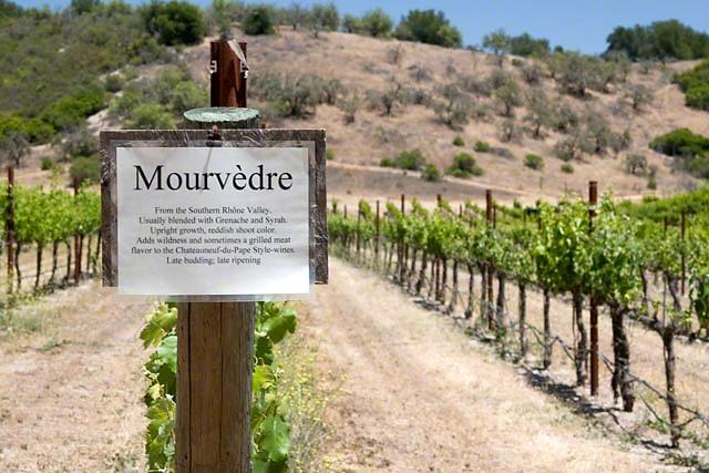 Paso Robles Rhone wine