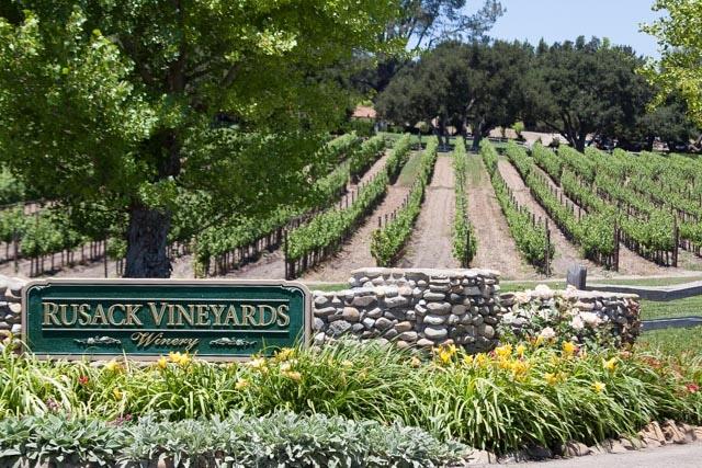 rusack vineyards image