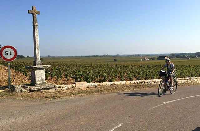 On a rental bike on D113 in Puligny Montrachet