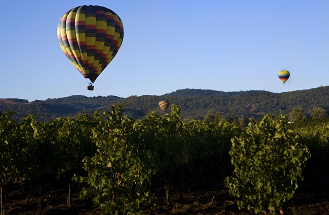 hot air balloon wine