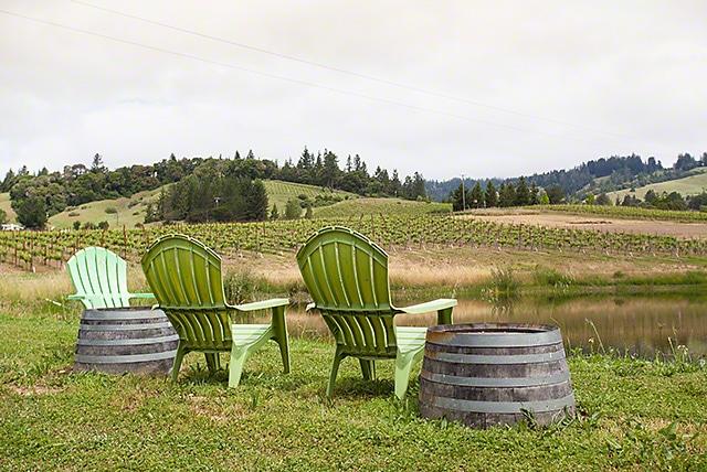 Lula Cellars vineyards in the Anderson Valley