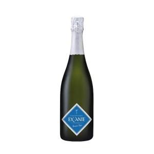 "Champagne AOC ""Ex Ante"" Extra Brut – Alexandre Penet"
