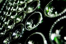 Wine Pleasures 50 Great Cavas