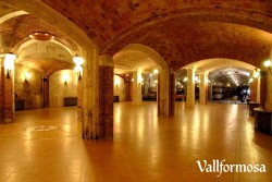 Wine Pleasures visits 50 Great Cava Vallformosa