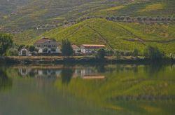 Wine Tourism Portugal iwinetc