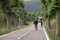 Wine country bike tour Penedes