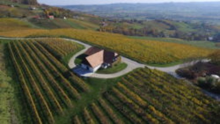 Istenič 50 Great Sparkling Wines of the World 2016