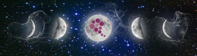 Biodynamic Wine – Zodiac And Moon Calendars