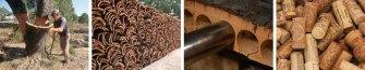 Cork Fabrication Procedure