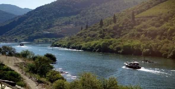 River Cruise in the Douro Valley