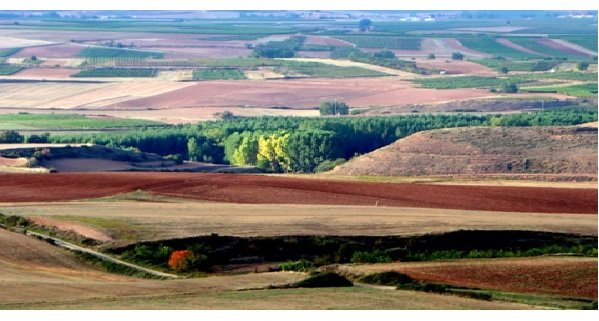 Rioja has a certain wild beauty in its landscape
