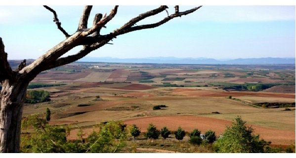The Rioja landscape is quite stunning.