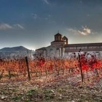 13 Best Wine Regions to Visit This Year Around the World