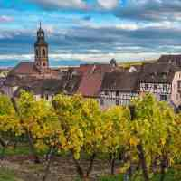 Alsace Itinerary: Visit These 5 Historic Wineries Along the Alsace Wine Route