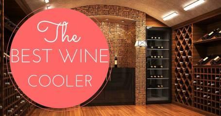 best wine cooler reviews