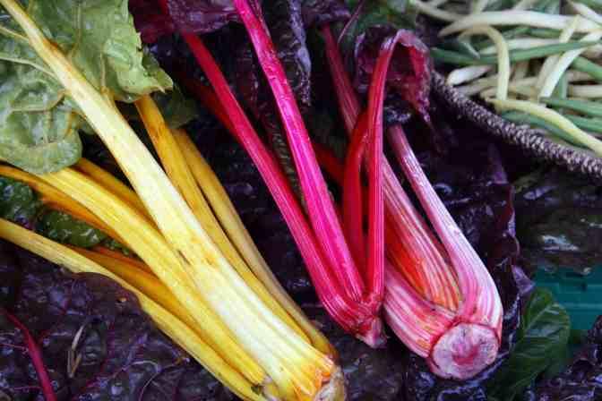 Rhubarb Wine Recipe: Light, Pink and Sweet - Wine Turtle | 672 x 448 jpeg 65kB