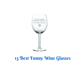13 Best Funny Wine Glasses