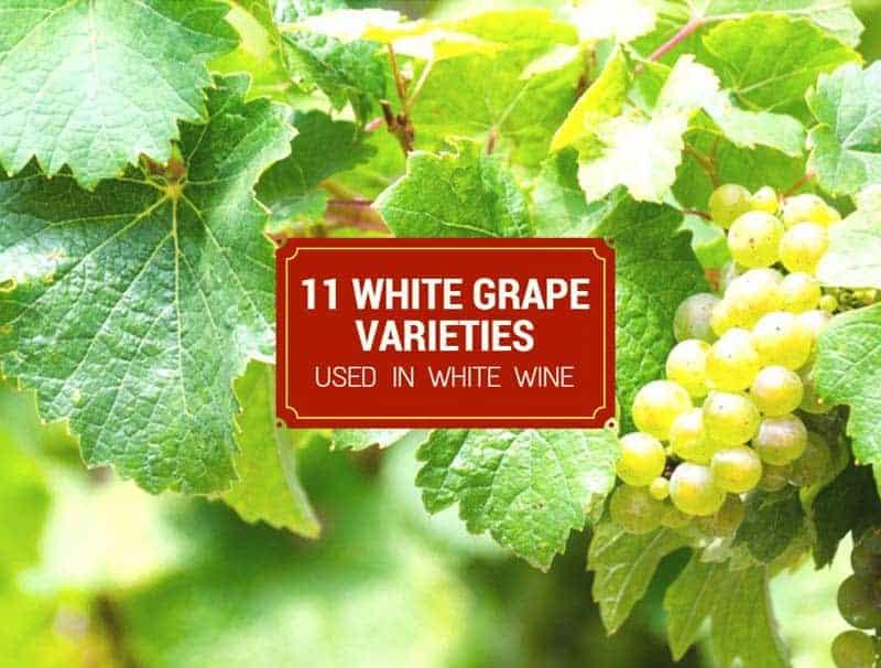 11 White Grape Varieties Used In White Wine