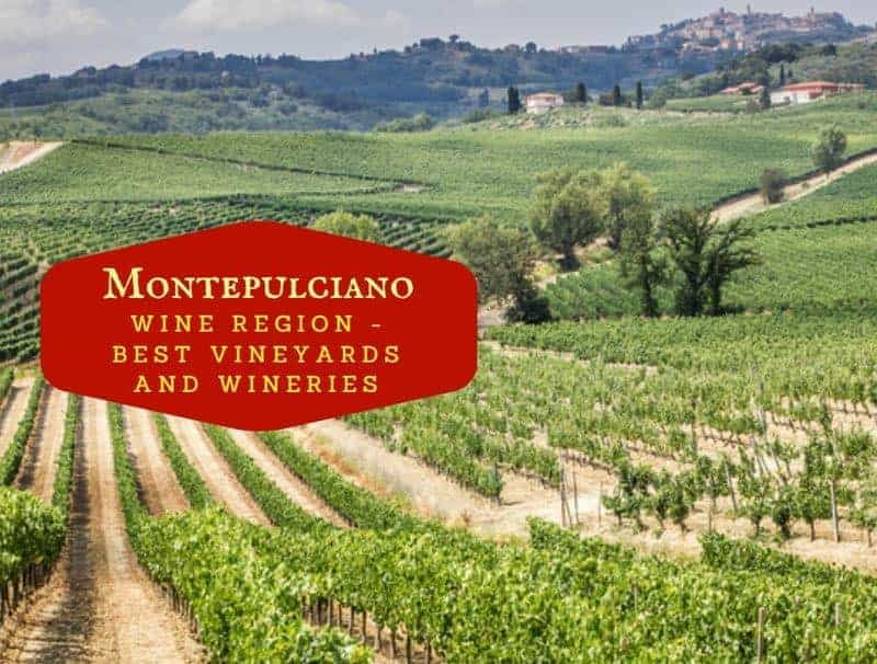 Montepulciano Wine Region - Best Vineyards And Cantinas