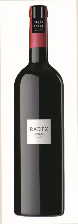 RADIX - Parés Baltà - copia