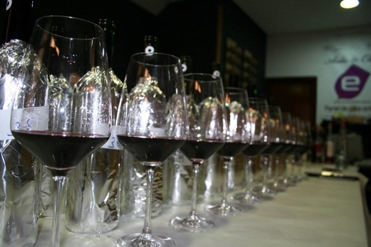 catando vinos tintos