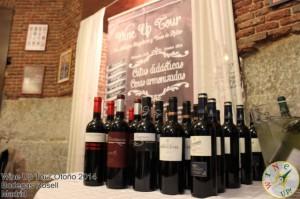 IMG_1956 #WineUpTour Otoño 2014  - copia