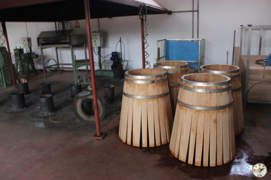 Wine Up en Vega Sicilia IMG_2944