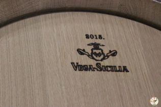 Wine Up en Vega Sicilia IMG_2949
