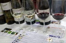 wineuptour 2018IMG_5072