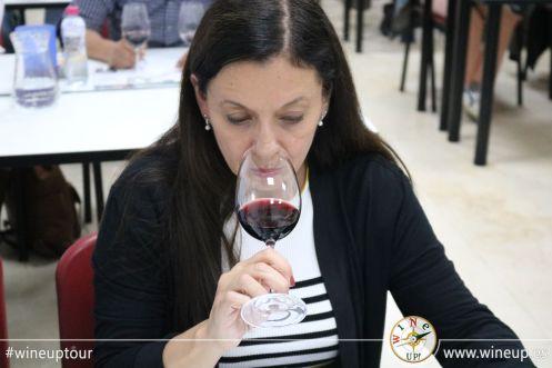 wineuptour 2018IMG_5086