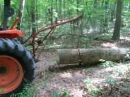 Logging 007