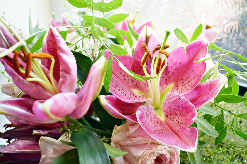 closeup lily Blossoming Gifts www.wingitwithjade.com