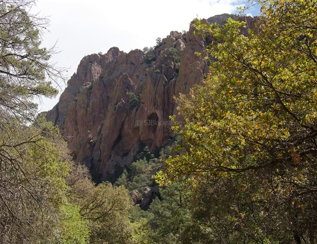 Cave Creek Canyon Scenic View1