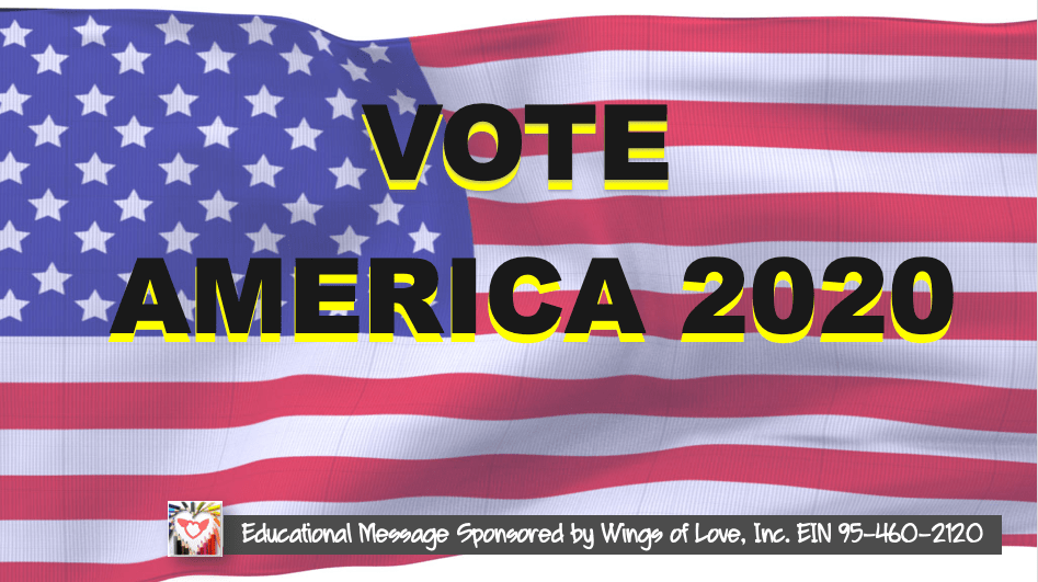 Vote America Educational Campaign by Wings of Love, Inc.