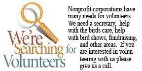 Looking for Volunteers graphic