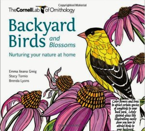 Birds and Blossoms coloring book artwork featuring a yellow bird sitting on pink flowers