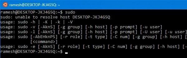 bash host name not resolved
