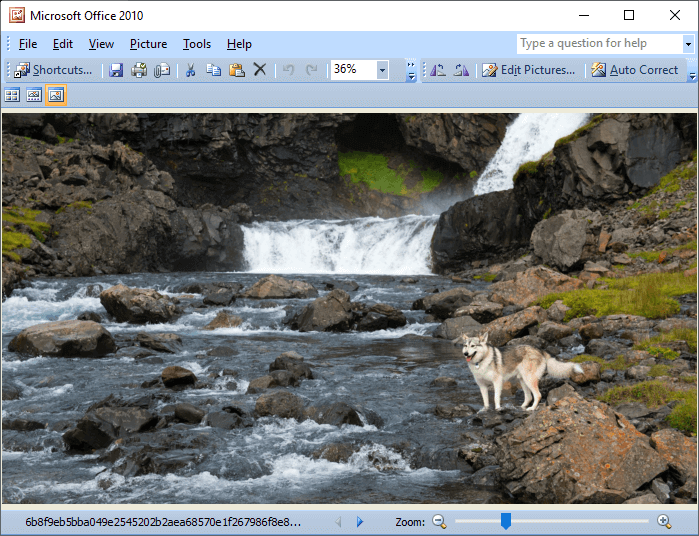 install office picture manager in windows 10