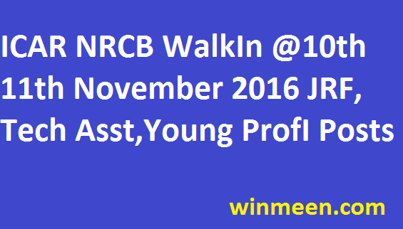 ICAR NRCB Trichy Jobs JRF Tech Asst and Young Professional Post through Walk In Interview