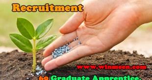 MFL Recruitment 2017 69 Apprentice PostsApply Online