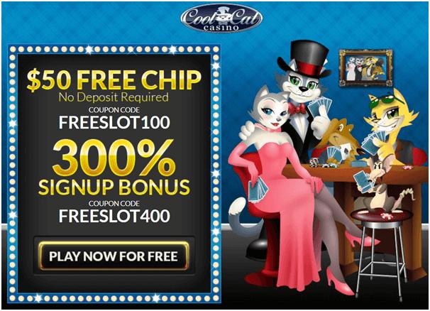 Cool cat casino cats day bonus