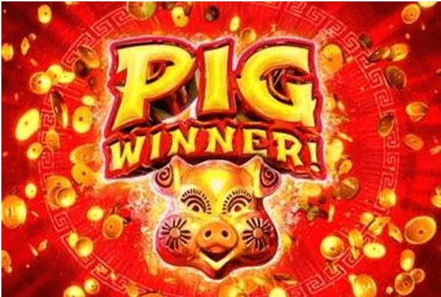 Pig Winner new slot game