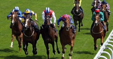 Betting gods horse racing guru peyarchi djokovic vs berdych betting expert boxing