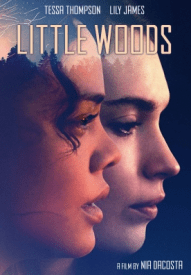 movies-little-woods