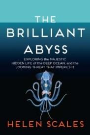 nonfic-the-brilliant-abyss