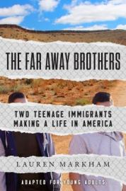 teen-fiction-far-away-brothers